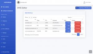 Aqua Panel DNS Editor